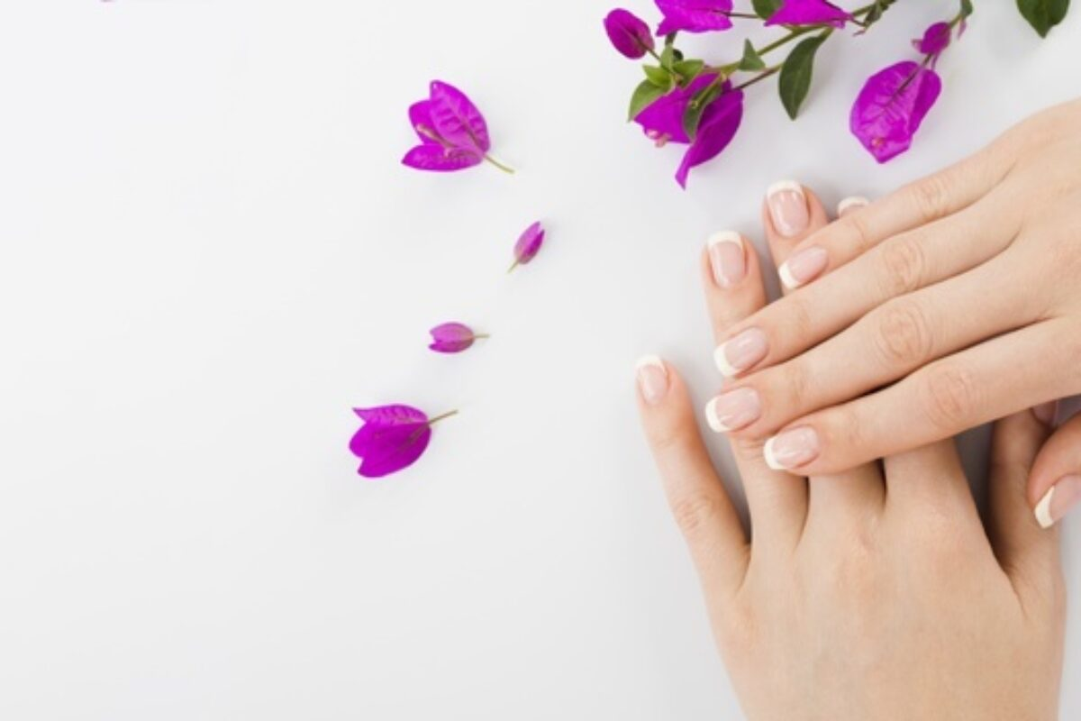 Woman s hands flowers with copy space 23 2148226454
